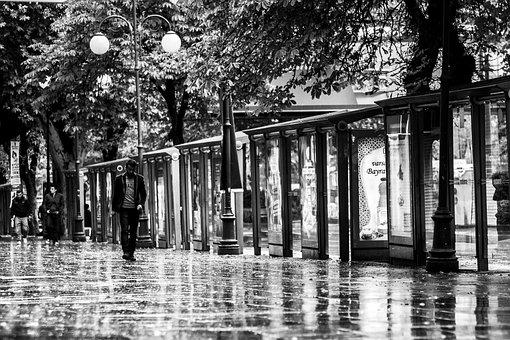 Black And White, Street, Avenue, City, Urban
