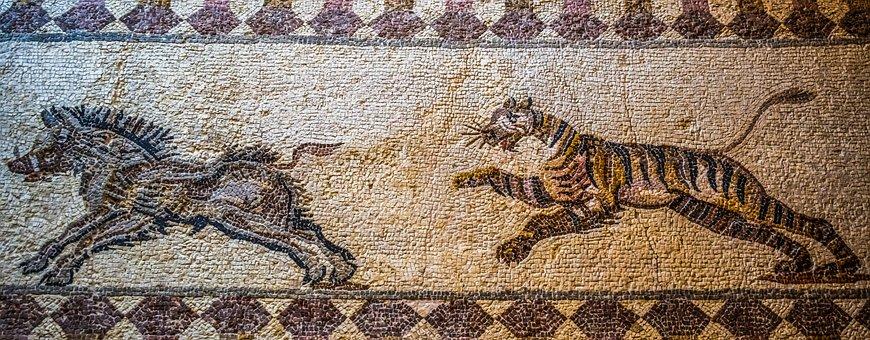 Tiger Hunting Boar, Mosaic, Floor Mosaic, Remains