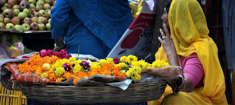 Flower, Shop, Seller, Market, Udipur, India