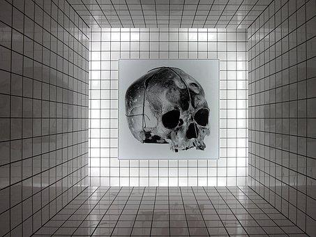 Art, Skull, Centre Pompidou, Raynaud, Installation