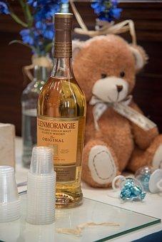 Bear, Stuffed Bear, Malt, Whisky, Event, Brit