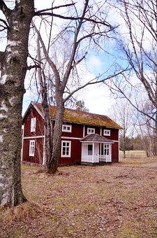 Internal Ultervattnet, House, Tree, Himmel, Sweden