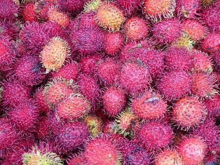 Market, Plant, Rabuntan