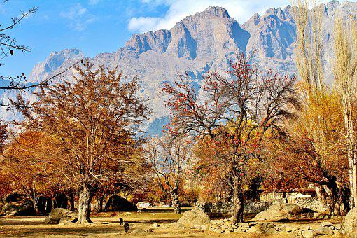 Mountains, Pakistan, Skardu, Tree, Sky, Blue, Air