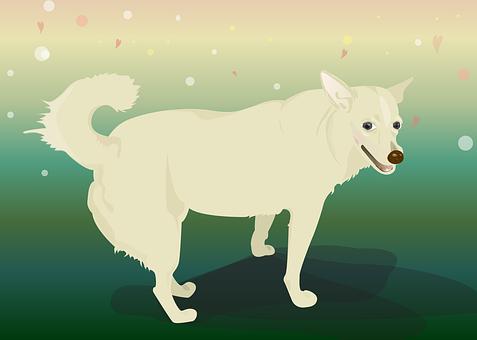 Dog, Color, Illustration, Pet, Laugh, Open Heart, Shy