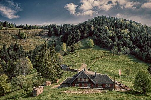 Alm, Black Forest, Abendstimmung, Mountains, Hut, Trees