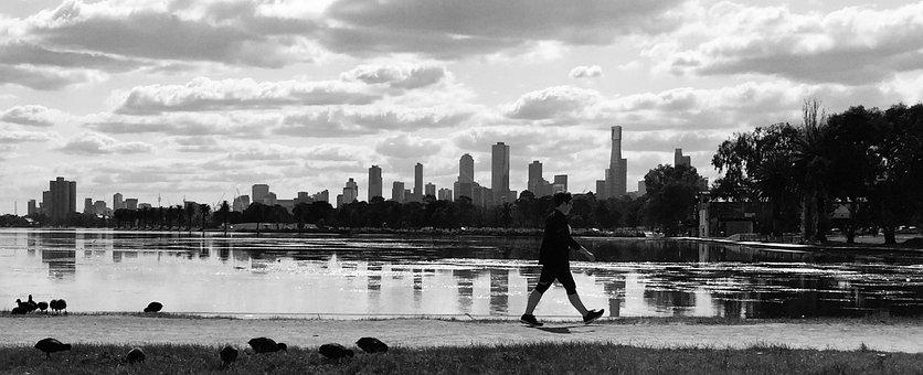 Melbourne, Albert Park, City, Lake, Water, Mirror Image