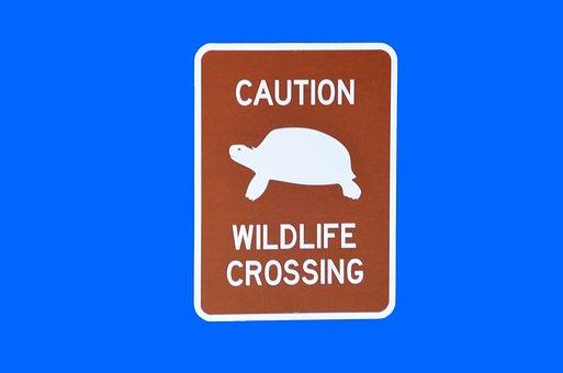 Wildlife Crossing, Sign, Symbol, Isolated, Background