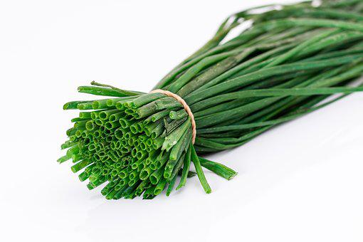 Spring Onion, Salad Onion, Flavoring, Green Onion