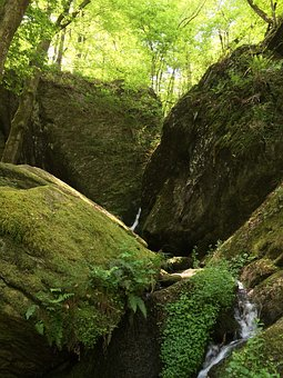 Ehrbach, Nature, Clammy, Rock, Water, Canyon, Flow