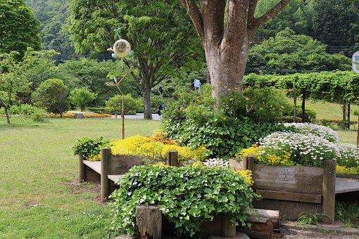 Garden, Square, Park, Bench, Green, In The Early Summer