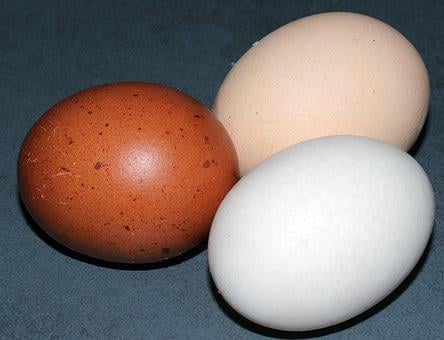 Egg, Hen's Egg, Color, Chicken Eggs, Food, Nutrition