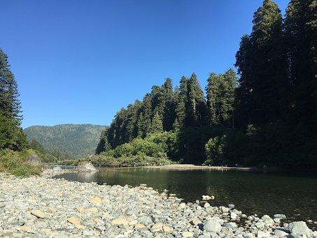 Jedediah Smith Redwood State Park, Usa, Redwood
