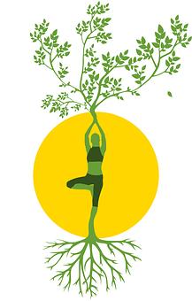 Silhouette, Women, Tree, Yoga, Meditation, Harmony