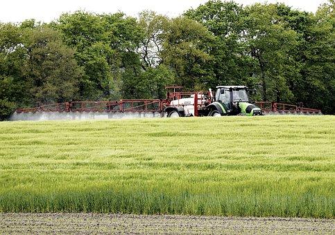 Fieldwork, Tractor, Farmer, Tractors, Field, Arable