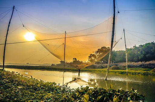 Tongue, Fishing Nets, The Hooves, Vó Fishing, Blue Sky
