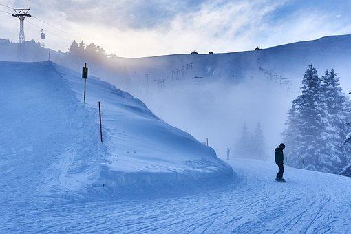 Skiing, Alpine, Sport, Snow, Winter Sports, Ski