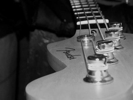 Bass Guitar, Bass Strings, Music