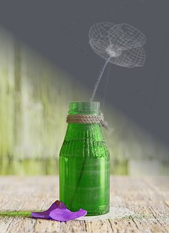 Cgi, Flower, Bottle, Still, Life, 3d, Nature, Design