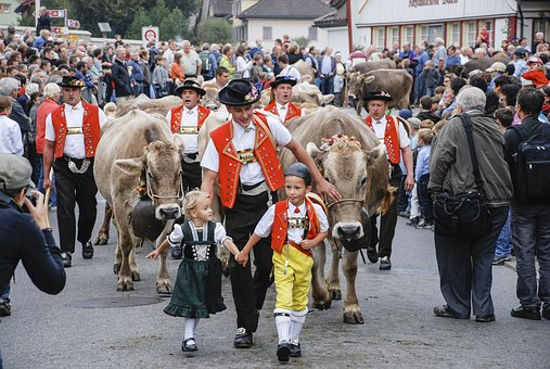 The Cattle Market, The Cow, Appenzell, Switzerland