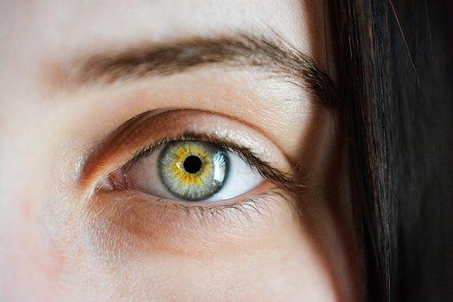Eye, Iris, Algae, Macro, Blur, Natural, Girl, Eyebrows