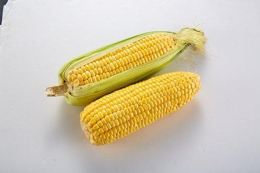 Vegetable, Corn, With Skin Corn, Corn On The Cob
