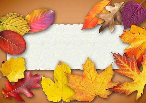 Autumn, Banner, Poster, Text Box, Invitation, Map
