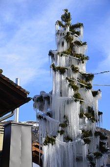 Christmas Tree Ice