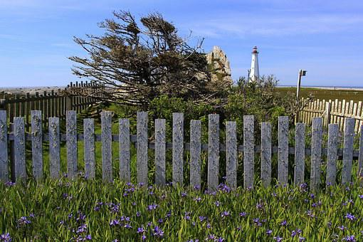 Lighthouse, Windblown, Beacon, Coast, Fence, Landscape