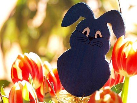 Easter Bunny, Easter, Rabbit, Customs, Custom