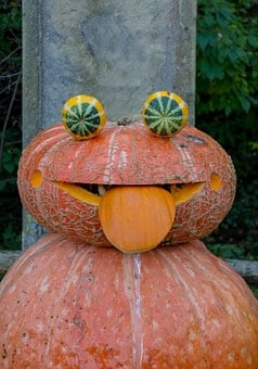 Pumpkin, Face, Autumn, October, Funny, Halloween