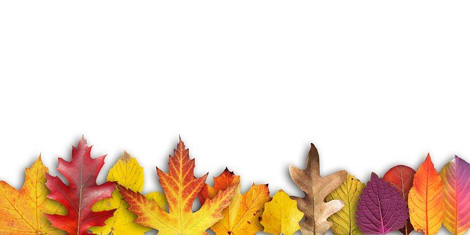 Autumn, Banner, Border, Text Box, Invitation, Map