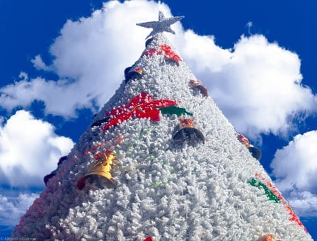 Christmas, Tree, Sky, Blue, Cloud, Xmas, White, Star