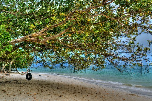 Phuket, Thailand, Phi Phi Island, Tire Swing, Travel