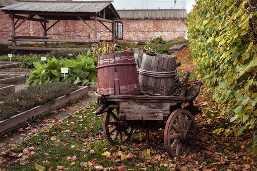 Autumn, Barrels, Cart, Yard, Landscape, Rear Yard