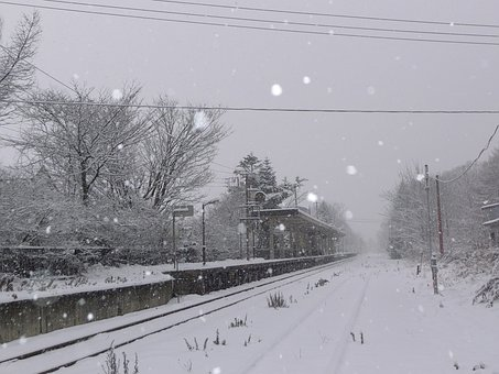 Japan, Winter, Snowing, Onuma Park