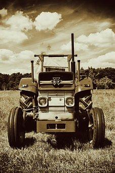 Tractor, Oldtimer, Massey Ferguson, Old, Agriculture