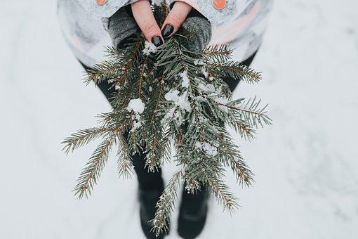 Girl, Snow, Pine Tree