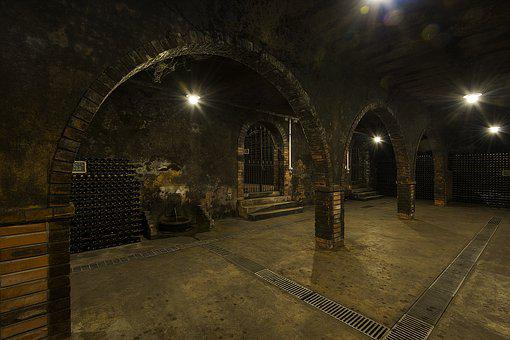 Caves, Anadia, Bairrada, Wines