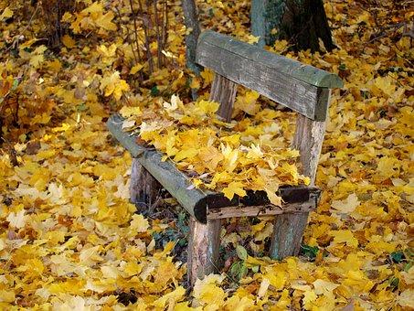 Park Bench, Autumn, Fall Foliage, Bank, Park, Leaves