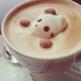 Tea, Cat, Coffee, Cafe, Cup, Latte Art, Foam