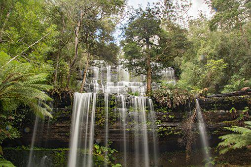 Australia, Tasmania, Mt, Field National Park, Landscape