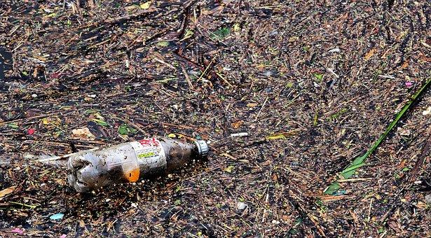 Bottle, Waste, Pollution, Garbage, Litter, Eyesore