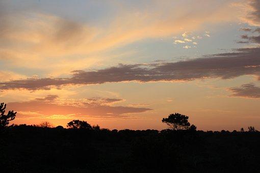 Africa, Skyline, Landscape, South, Travel, Rural