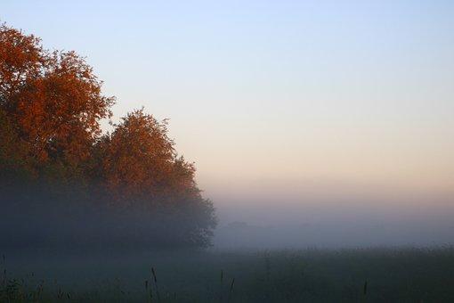 Morgenstimmung, Fog, Sunrise, Nature, Mood