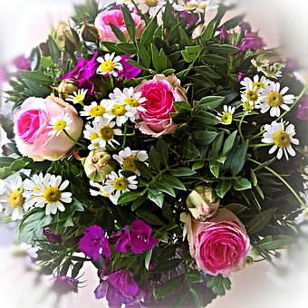 Bouquet, Pink Red Roses, Small Daisies, White