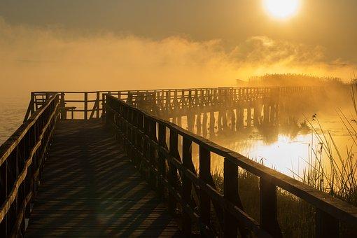 Spring Lake, Sunrise, Fog, Mist, Ghostly, Backlighting