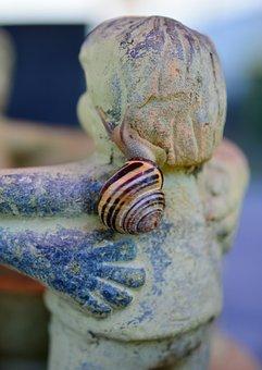 Snail, Tape Worm, Shell, Reptile, Mollusk, Crawl