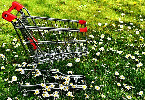 Shopping, Shopping Cart, Sale, Meadow, Daisy