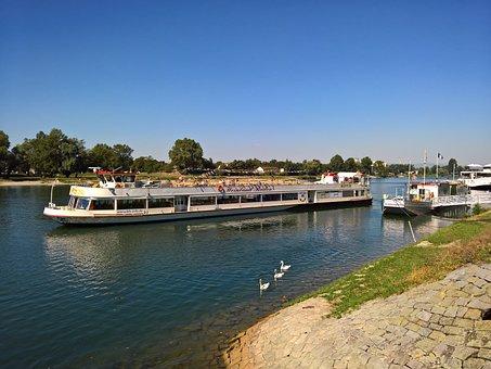 Rhine, Breisach, Ship, Water, Swim, River, Swans